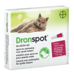 Dronspot grote kat